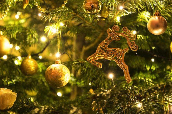 Weihnachtsprogramm mit vielen Veranstaltungen in Corralejo