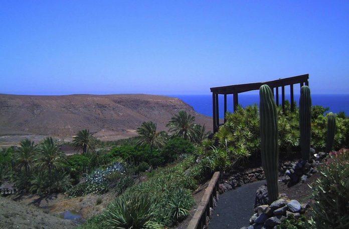 7 Tage Wetterbericht - steigende Temperaturen auf Fuerteventura