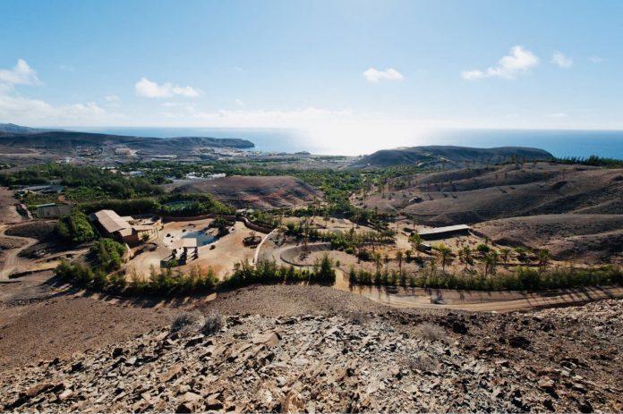 Neue Öffnungszeiten im Oasis Wildlife Fuerteventura - Bildquelle: Oasis Wildlife Fuerteventura