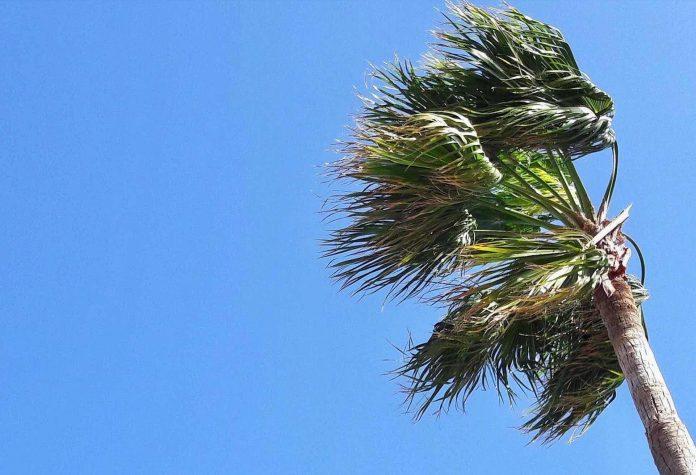 Starker Wind zum Ende der Woche auf Fuerteventura